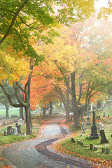 Quiet Morning Walk (DaveLawler) Tags: morning cemetery worcester foliage grave gravestone road election hope