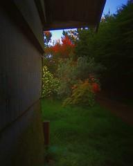Acuarela   Tirúa, Wallmapu/Chile. (David RSG) Tags: tirúa territoriolavkenche wallmapu biobio chile chilean latino américa sudamerica américalatina américadelsur americadosul 南美洲 fotodecelular huawei huaweiy635