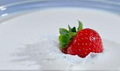 Strawberry surprise.. (padge83) Tags: nikon d5300 strawberry milk splash flashes westyorkshire macro