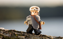 Running by the Lake (Reiterlied) Tags: 105mm d5200 dslr erso jyn jynerso lego legography lens macro minifig minifigure nikon photography prime reiterlied rogueone sigma starwars stuckinplastic toy