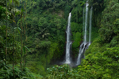 Sekumpul Falls (ben_leash) Tags: waterfall sekumpul bali sony a77 indonesia nature jungle