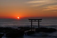 Sunrise of the pacific ocean (t.kunikuni) Tags: jp             japan ibaraki ibarakiken oarai oaraimachi oaraiisomaejinjashrine oaraicoast pacificocean torii sea ocean sunrise dawn     daylight