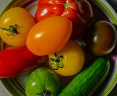 2016-10-16  Tormato (Yes) (Robert - Photo du Jour) Tags: octobre 2016 aufildutemps tormato yes tomates plats entre porte tor tomateancienne noire verte jaune orange rouge sauce