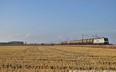 E483 308 Akiem (MattiaDeambrogio) Tags: treno treni train trains e483 akiem traxx bombardier borgolavezzaro erolipercaso nonsonulla