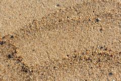 (klgfinn) Tags: autumn balticsea landscape pattern sand sea shore