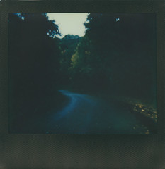 """Keeps rainin' all the time"" (The Stugots) Tags: polaroid spectra impossible project color black frame instant film landscape rain raining sky clouds fall autumn october gloomy trees polaroidweek roidweek roid week snap it see snapitseeit pittsburgh pennsylvania evening"