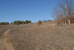 DSG_7377 View back towards Photo Post #1  The bench seat and photo post are visible on the horizon just to the right of the smallish oak in the centre of the photo (Greying_Geezer) Tags: 2016 hazelbird ncc natureconservancyofcanada hamiltontownship ort hiking naturereserves