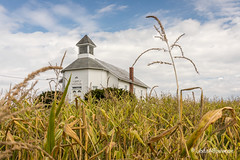 Country Church (John H Bowman) Tags: ohio washingtoncounty churches methodistchurches palmerunitedmethodistchurch countrychurches fields rural blueskywhiteclouds october2016 october 2016 canon24704l
