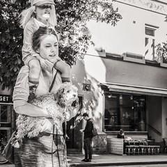 walking the ... (Gerard Koopen) Tags: zweden sweden stockholm city capital bw blackandwhite candid straatfotografie streetphotography straat street walking woman girl dog fujifilm fuji xpro1 35mm 2016 gerardkoopen