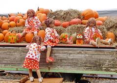 Hab mein Wagen voll geladen ... (Kindergartenkinder) Tags: dolls himstedt annette kindergartenkinder essen park gruga personen kind outdoor krbis herbst oktoberfest sanrike milina pflanze gemse
