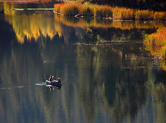Lake in the autumn hills above Merritt, BC (Al Varty) Tags: shine lake autumn hills merritt bc boat