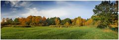 Autumn Panorama. (vegetus aer) Tags: woodwaltonfen greatfen greatfenproject wildlifetrust bcnwildlifetrust nnr cambridgeshire wildlife autumn