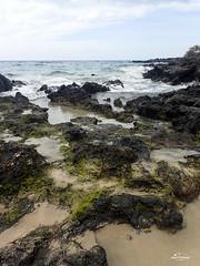 Lava Surf (DMac Photography) Tags: uncruise hawaii molokai maui lahaina kona