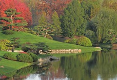 Japanese Garden Scene in Autumn (Cher12861 (Cheryl Kelly on ipernity)) Tags: fromthearchivesfromnovember2014 japanesegarden chicagobotanicgarden glencoeillinois landscape water pond reflections trees nature beauty