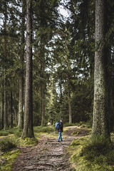 Woods 4 (MichaelBmxking) Tags: view rocks trees bastei elbsandsteingebirge schwedenlcher sachsen saxony mountains canon eos mark available light day daylight sunflare berlin germany beautiful adobe photoshop lightroom vsco filter vscofilters summer autumn awesome look belive perspective summertime dusk smile love outdoor lens urban nature vans shoes trip leica q leicaq typ 116 typ116 f17 28mm summilux new addicted harz gosslar okertal okertalsperre