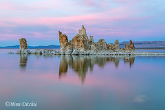 Pastel Sunset (Mimi Ditchie) Tags: easternsierra fall monolake lake sunset pastel pastelsunset tufa tufaformation