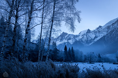 Frozen valley (stram36) Tags: frozen cold froid montagne alpes mountain lac landscape paysage matin morning heurebleue canon eos 100d tamron 16300mm chamonix france hiver winter neige snow glace glacier ice montblanc tree arbres soe