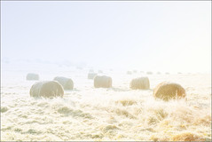 Haybales (mikeyp2000) Tags: morning frosty landscape hay cold a99ii frost sky farm location rural bales field