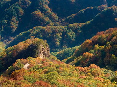 燕山 Yanshan Mountains (gerrit-worldwide.de) Tags: china hebei yanshan mountain mountains olympus em1 forest autumn fall 中国 燕山 2016 golden yellow red leaves leaf