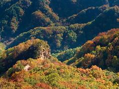 Yanshan Mountains (gerrit-worldwide.de) Tags: china hebei yanshan mountain mountains olympus em1 forest autumn fall   2016 golden yellow red leaves leaf