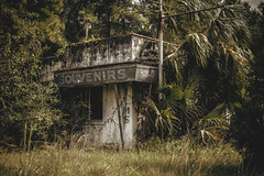 Welcome to Florida (3rd-Rate Photography) Tags: plants building abandoned canon 50mm florida souvenir 365 giftshop 5dmarkiii earlware 3rdratephotography