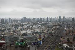 View of Lima (World Bank Photo Collection) Tags: city bridge urban peru skyline buildings highway view lima bridges franz worldbank 2015 annualmeetings