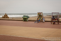 Rickshaws on Durban Beach Front, South Africa