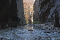 "The Narrows • <a style=""font-size:0.8em;"" href=""http://www.flickr.com/photos/63501323@N07/21880971944/"" target=""_blank"">View on Flickr</a>"
