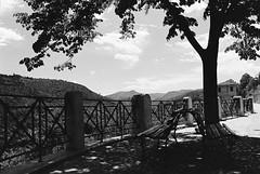 Spoleto 14 (Ian Atrus Gazzotti  iangazzotti.com) Tags: trees blackandwhite bw tree alberi analog 35mm bench nikon bn spoleto benches albero umbria biancoenero nikonf70 panchina f70 panchine
