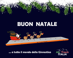Buone Feste da Air Track Italia www.airtrack-italia.com #buonnatale #natale #gymnastic #ginnasticaartistica #xmas #gymnast (Air Track Italia) Tags: xmas gymnast natale gymnastic buonnatale ginnasticaartistica