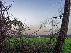 Bauernhof am Knipprather Wald (KL57Foto) Tags: winter field pen germany landscape deutschland am farm natur feld olympus nrw landschaft wald rhein rheinland rhineland bauernhof monheim 2015 monheimamrhein epm2 stadtmonheim knipprather kl57foto stadtmonheimamrhein