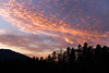 Sunset over the forest - (rotraud_71) Tags: trees winter sunset sky mountain clouds december badreichenhall högl vanagram