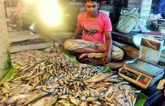 The Fishmonger (RiddhoRaju) Tags: portrait fish shop market bongo progress business fishmarket bengal bangladesh bangla prosperity bengali shopkeeper htc bangladeshi bangali fishseller jessore anawesomeshot thefishmonger photoghrapy fishphotography catchthedream fishbusiness jessorebangladesh rajudey riddhoraju মাছব্যবসায়ী fishmarketjessore jessorekhulnabangladesh মাছবাজার মাছবিক্রেতা riddhorajuphotography যশোরমাছবাজার যশোরখুলনাবাংলাদেশ