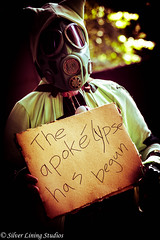 The Apokelypse 5 (silver lining studios) Tags: pokemon post apocalypse pikachu pa gas mask