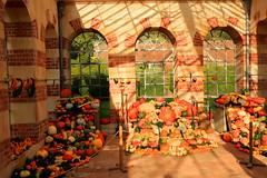 The Orangery (acwills2014) Tags: windowswednesday orangery tyntesfieldhouse nationaltrust halloween pumpkins gourds autumn display show shadows light