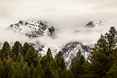 surgir (Christian Collins) Tags: teton tetonas canon t21 ef70200mm rebel mountain snow pine cloud fog mist neblina montaa emerge arise reveal cloudy