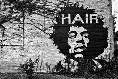 (AbandonedRoadWarrior) Tags: mural jimi kentucky covington vintage f nikon white black wall hendrix