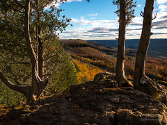 Sunset on Old Baldy (paulstewart991) Tags: canon70d canadian country beavervalley sunset goldenhour outdoors forest fall autumn