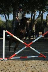 IMG_4892 (Bas & Emily) Tags: horse horses horsejumping jump jumping rijden paard paarden springen springwedstrijd sport belleepoque hindernis
