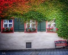 Am Pfarrhaus (Peter Schler) Tags: germany bavaria bayern weisenburg laub autumn herbst peterpe1 flickr