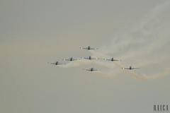 Musal(88) (RAICA Fotografia) Tags: voar musal rj fumaa esquadrilha ceu caracal