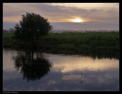 the early fish... (Neil Tackaberry) Tags: early dawn daybreak sunrise fish jumping jumpingfish river feale fealeriver riverfeale morning riverbank landscape cloud outdoor sky