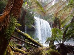 Russell Falls (LeelooDallas) Tags: australia tasmania mount field national park russell falls landscape dana iwachow fuji finepix hs20 exr water waterfall tree forest