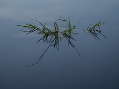 Stillness on the lake II (schauplatz) Tags: bayerischerwald bayerwald deutschland lamerwinkel urlaub kleinerarbersee landscape seascape lake karsee bavarianforest mirror mirrorimage spiegelbild spiegelung tarn cirquelake