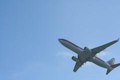 IMG_2637 (wmcgauran) Tags: kbos bos boston airport eastboston aviation airplane aircraft n917nn american americanairlines boeing 737 737800