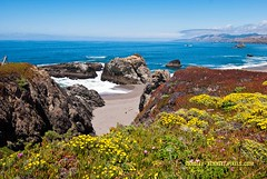 694 coast LR (bradleybennett) Tags: water river ocean stream creek beach shore shoreline line coast tide