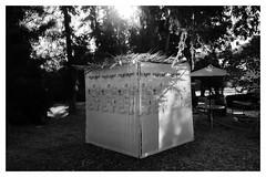 Sukka (Rodrigo Uriartt) Tags: sukka mitzvot sukkot caban jew yehudi chag divine light luz envolvente backlight goldenhour bw bnw pb mono monochrome art israel betyehoshua fujifilm xpro1