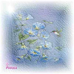 Oltre lapparire del nulla (Poetyca) Tags: featured image sfumature poetiche poesia