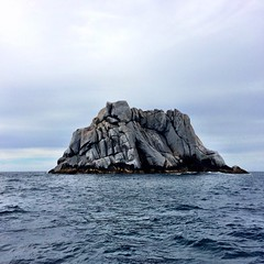 A large rock. Bass Strait.