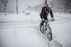 Blizzard, Strandvgen, Stockholm, November 9, 2016 (Ulf Bodin) Tags: strandvgen sverige blizzard winter biking canonef35mmf14liiusm sweden outdoor bike snstorm sn urban canoneos5dsr vinter stockholm helmet streetphotography snow urbanlife stockholmsln se